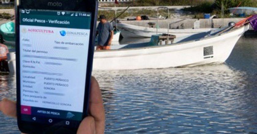 Beneficiará Conapesca a 300 mil pescadores con permiso comercial electrónico